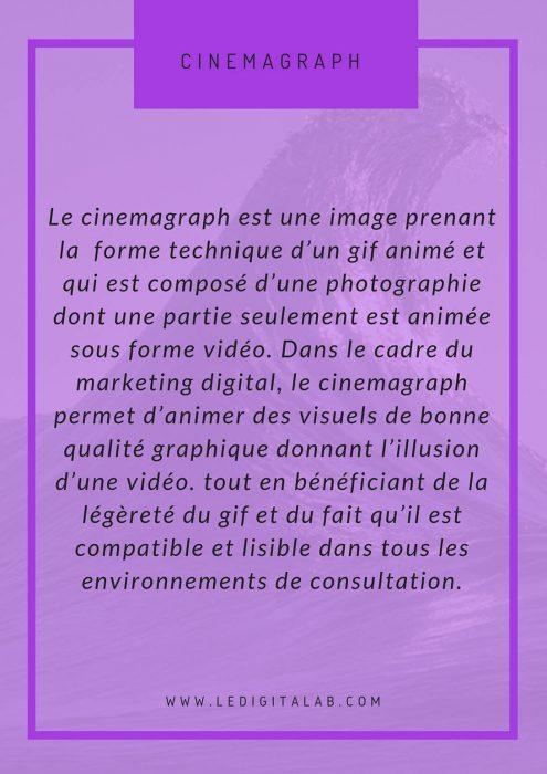 définition cinémagraphe